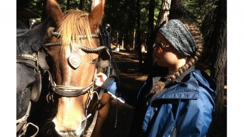 Sophomores become cowboys for weeklong stay at Greenhorn Ranch (slideshow and video included)