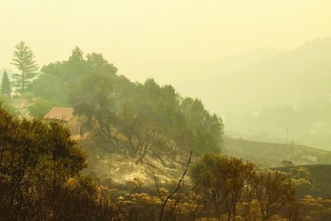 Fires devastate California's wine country; SCDS students, teachers, alumni feel the burn